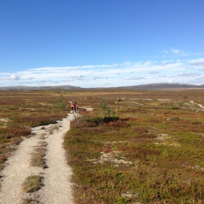 teamnordictrail_2014_storhognahost4