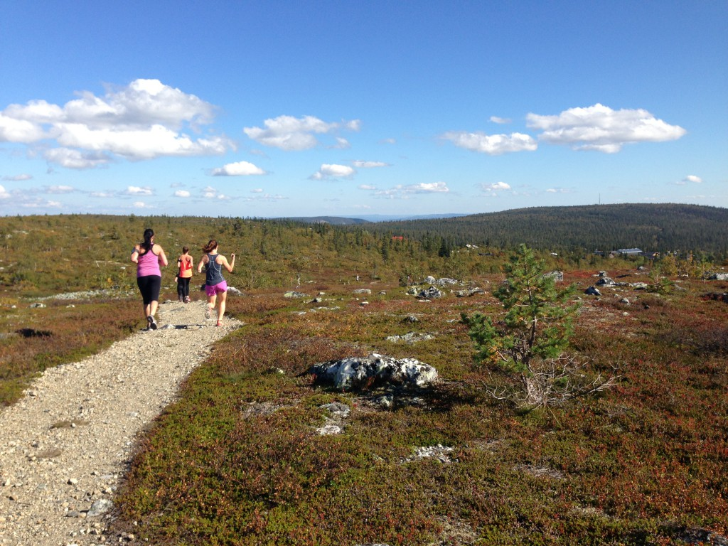 teamnordictrail_2014_storhognahost5