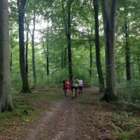 Trailrunning med Team Nordic Trail i Åkulla skogar under Outmeals vandring!