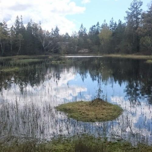 SoteledenFjällsjö