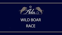 wildboarrace